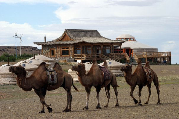Photo: Three Camel Lodge