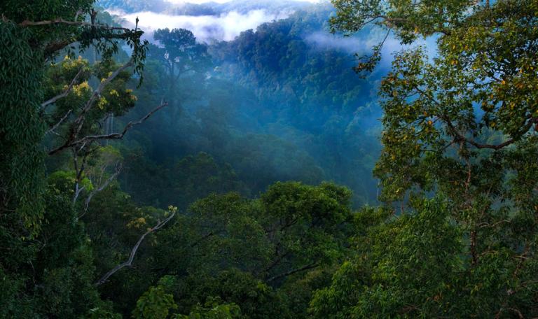 Photo: Ulu Ulu National Park Resort