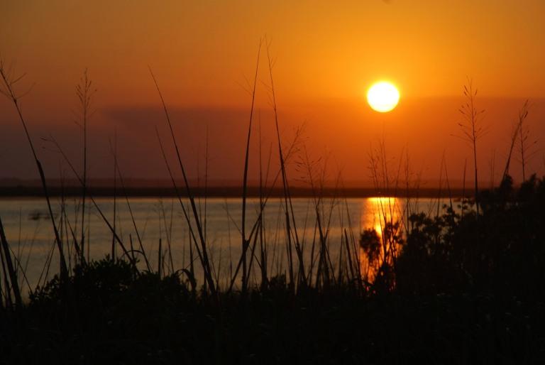 Photo: hortongrou via freeimages.com