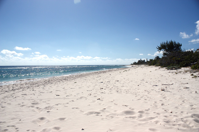 Photo: alexanderhotelcayman.com