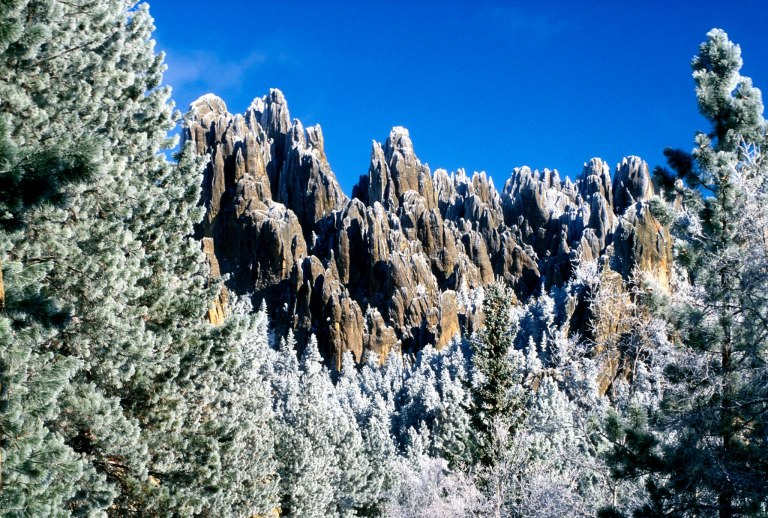 Photo: Custer State Park