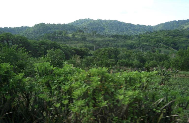 Photo: Effervescing Elephant [Flickr] via Cuba Travel Guides