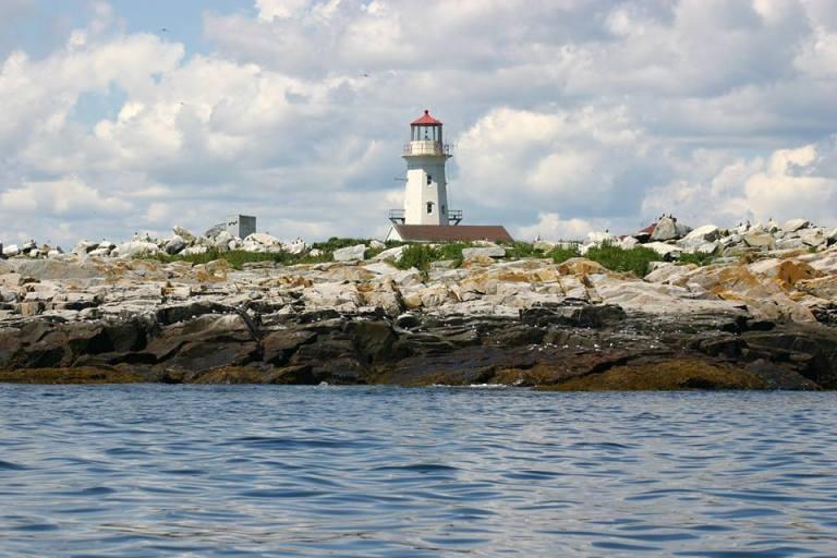 Photo: Sea Watch Tours