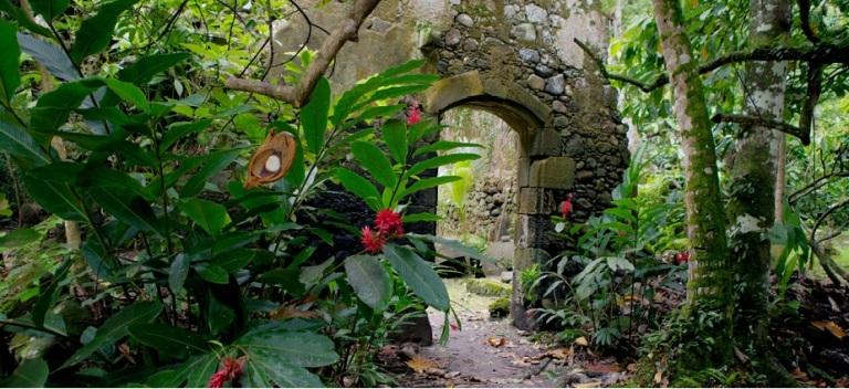Photo: Bike St. Lucia